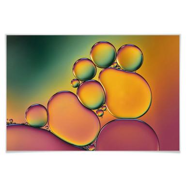 Poster Westum - Bubbles