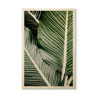 Holzposter Palmenblätter