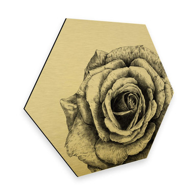 Hexagon - Alu-Dibond Goldeffekt Kools - Rose