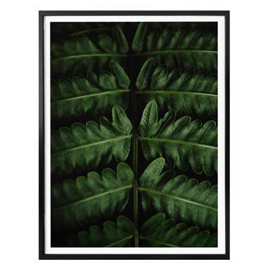 Poster Botanical 02