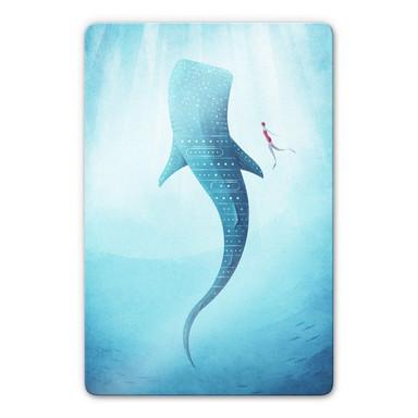 Glasbild Rivers - Der Walhai