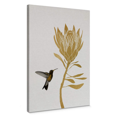 Leinwandbild Orara Studio - Hummingbird and Flower - goldene Blume