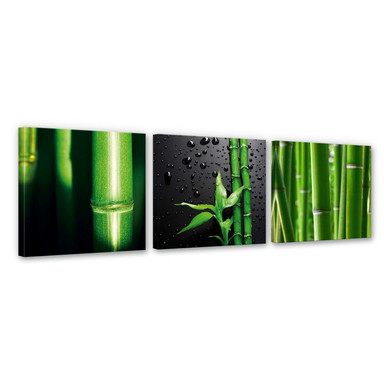 Leinwandbild Bambus-Set (3-teilig)