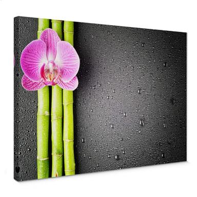 Leinwandbild Orchid and Bamboo