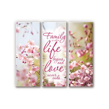 Hartschaumbild Family is where Life begins (3-teilig)