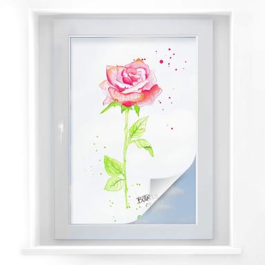 Sichtschutz Buttafly - Rose