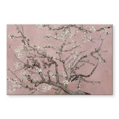 Acrylglasbild van Gogh - Mandelblüte Rosé
