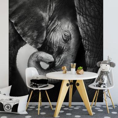 Fototapete - Das Elefantenbaby - 240x260cm - Bild 1