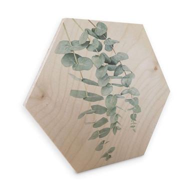 Hexagon - Holz Birke-Furnier - Sisi & Seb - Eukalyptus: Mehrere Zweige