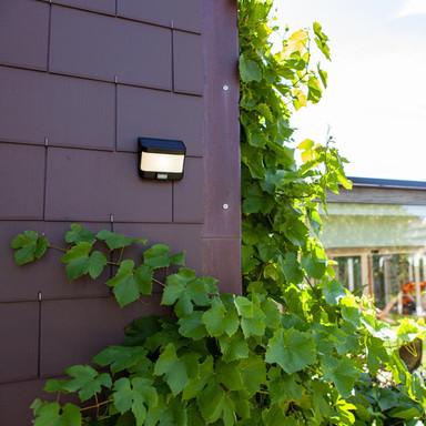 LED Solar Wandleuchte Try in Anthrazit 8W 500lm IP54 mit Bewegungsmelder