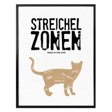 Poster Streichelzonen - Katze