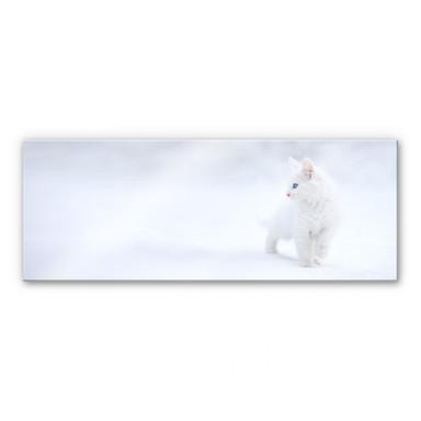 Acrylglasbild Prexus - Weisser als Schnee