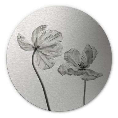 Alu-Dibond Bild mit Silbereffekt Grønkjær - Tulpenblüte - Rund