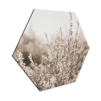 Hexagon - Alu-Dibond Annie - Gräser