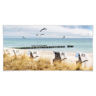 Poster Strandkörbe an der Ostsee