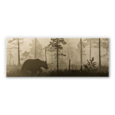 Wandbild Ove Linde - Nebel am Morgen - Panorama