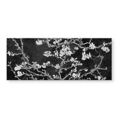 Acrylglasbild van Gogh - Mandelblüte - schwarz - Panorama