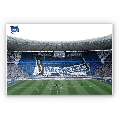 Wandbild Hertha BSC - Spielstart im Stadion