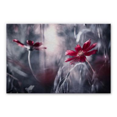 Alu-Dibond-Silbereffekt Bravin - Blütenrausch