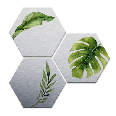 Hexagon - Alu-Dibond-Silbereffekt - Kvilis - Dschungel 04 (3er Set)