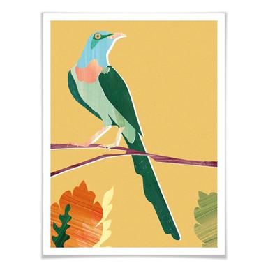 Poster Goed Blauw - Tropischer Vogel