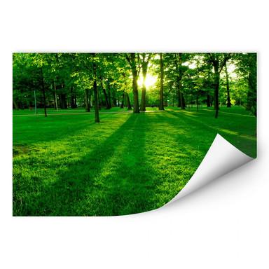 Wallprint Park im Grünen