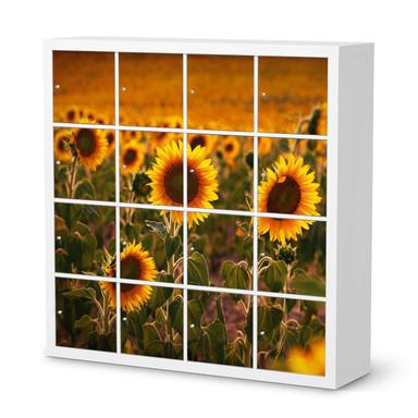 Möbelfolie IKEA Expedit Regal 16 Türen - Sunflowers