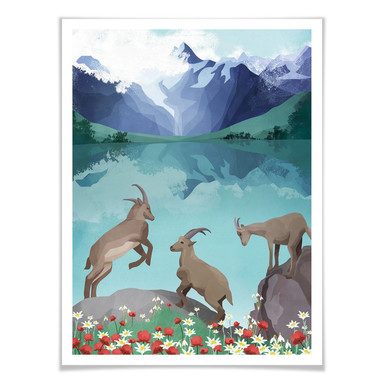 Poster Goed Blauw - Steinböcke in den Bergen