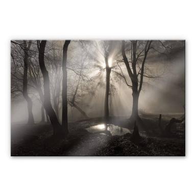 Acrylglasbild Cuadrado - The Spirit