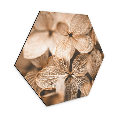 Hexagon - Alu-Dibond Annie - Zarte Blüten