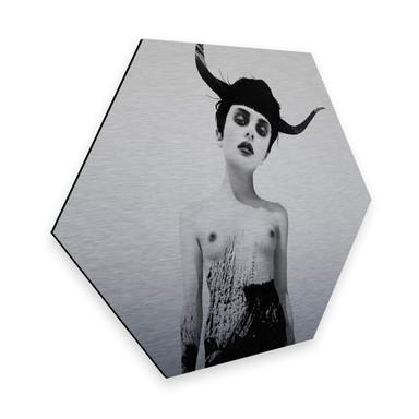 Hexagon - Alu-Dibond-Silbereffekt - Ireland - The Sweetest Kill