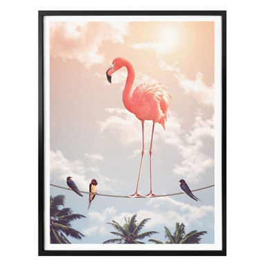 Poster Loose - Flamingo and Friends