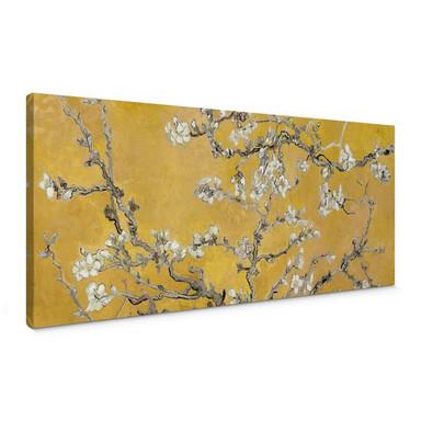 Leinwandbild van Gogh - Mandelblüte Ocker - Panorama
