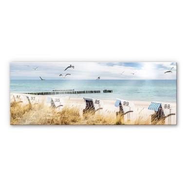Acrylglasbild Strandkörbe an der Ostsee