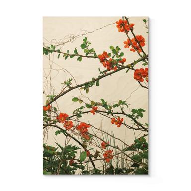 Holzposter Kadam - Flora Quittenblüte