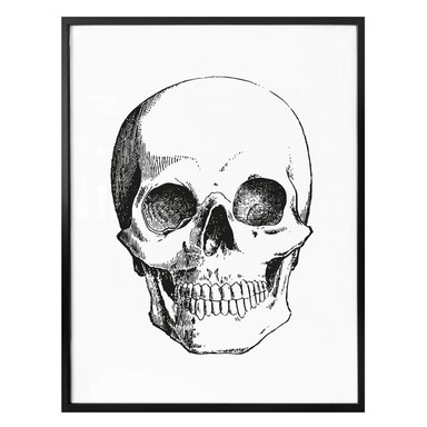 Poster - Human Skull