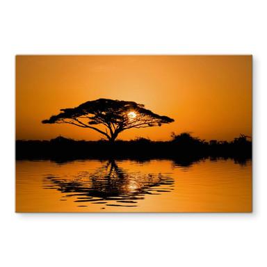 Glasbild Afrika