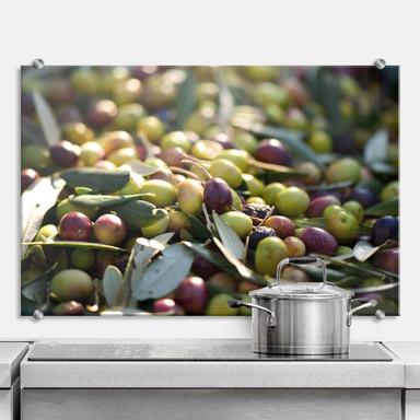 Spritzschutz Mediterrane Oliven