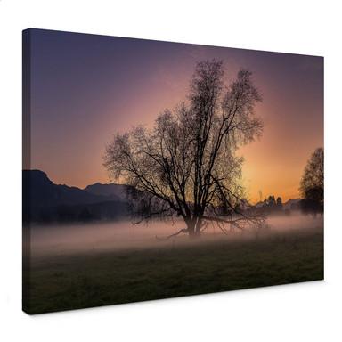 Leinwandbild Cuadrado - The Fog