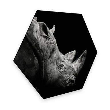 Hexagon - Alu-Dibond Meermann - Das Nashorn