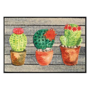 Wash&Dry Fussmatte Jardin de Cactus 50x75cm