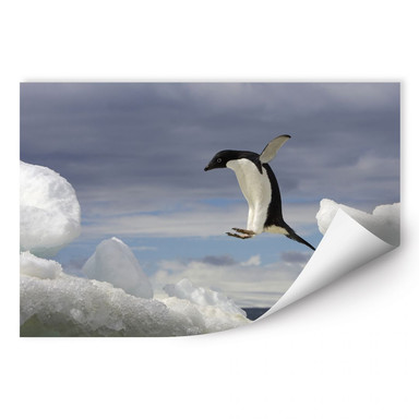 Wallprint NG Pinguin Fly