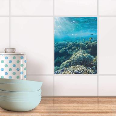 Fliesensticker - Underwater World