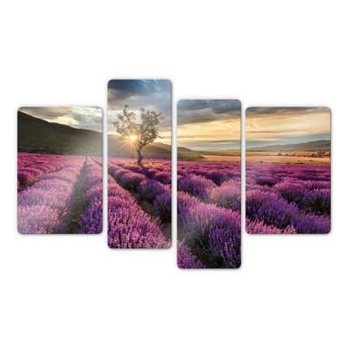Glasbild Lavendelblüte in der Provence 4-teilig - Bild 1