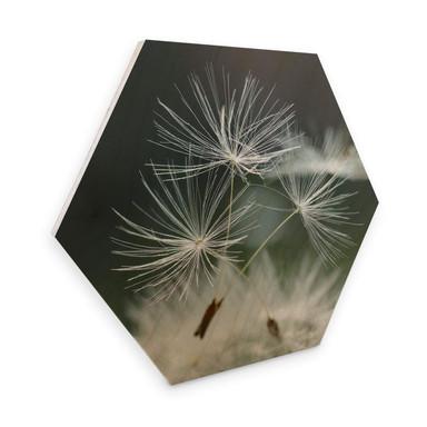 Hexagon - Holz Birke-Furnier Delgado - Pusteblumenvielfalt