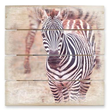 Holzbild Zebra Fohlen