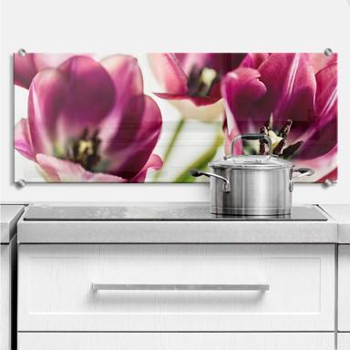 Spritzschutz Bsmart - Tulips