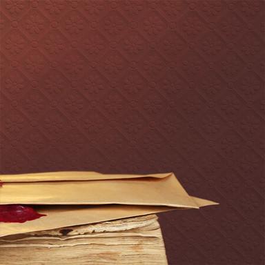 Anaglypta® Amber Luxuriöse strukturierte Vinyltapete überstreichbar, weiss