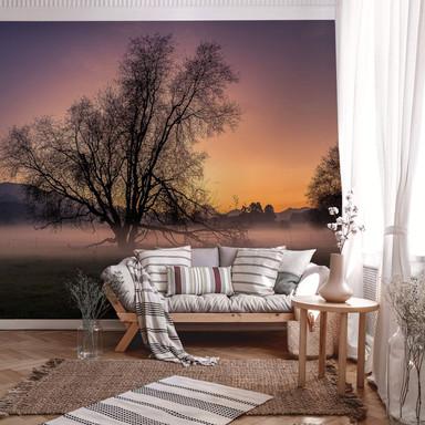 Fototapete Cuadrado - The Fog - 384x260cm
