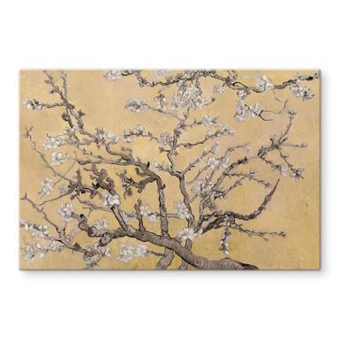 Glasbild van Gogh - Mandelblüte Creme